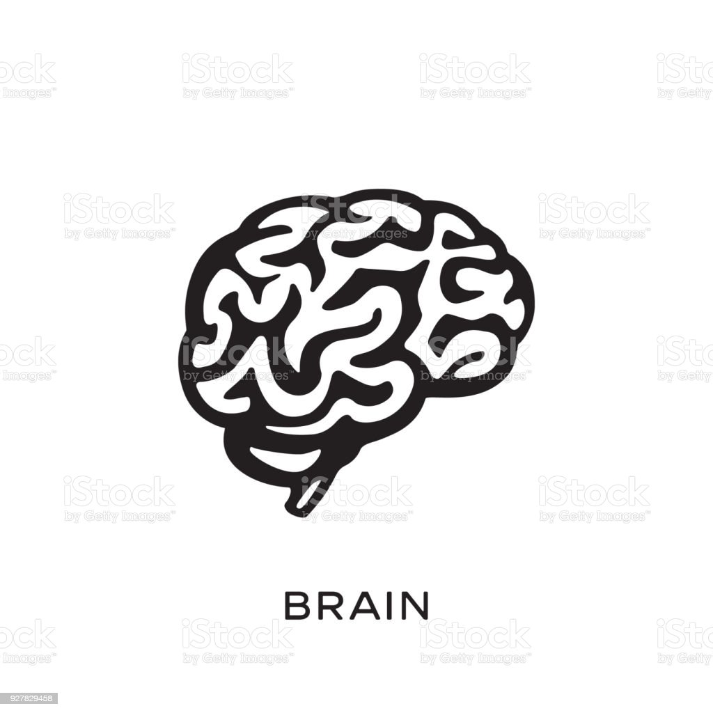Human brain silhouette design vector illustration. Think idea concept. Brainstorm vector art illustration