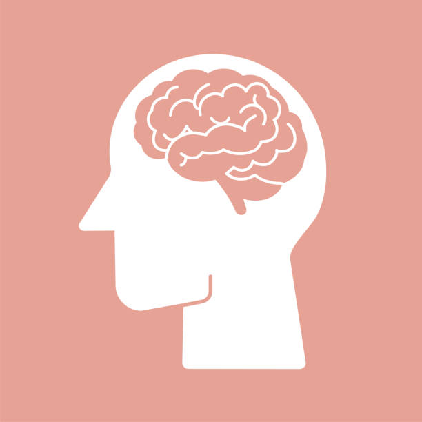 Human brain vector icon illustration Human brain vector flat icon pictogram symbol on pink background easy to edit stoke and color human head stock illustrations