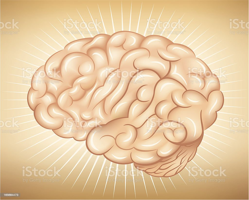 Human brain royalty-free human brain stock vector art & more images of anatomy