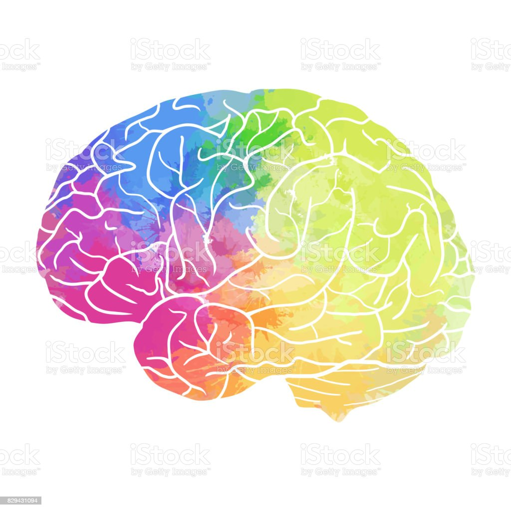 Human brain with rainbow watercolor spray on a white background - ilustração de arte vetorial