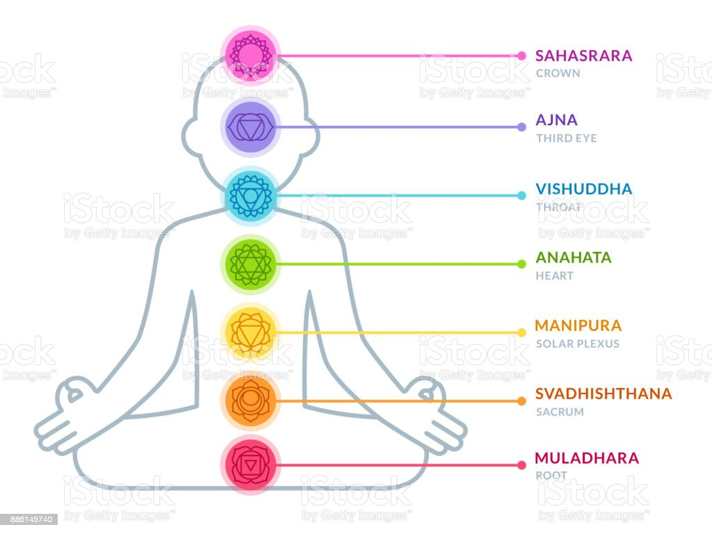 human chakras infographic chart vector id886145740 human chakras infographic chart stock vector art & more images of