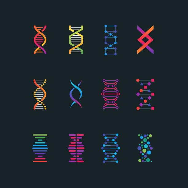 ilustraciones, imágenes clip art, dibujos animados e iconos de stock de símbolos de tecnología de la investigación de adn humano. espiral molécula bio medical tech vector los iconos - adn