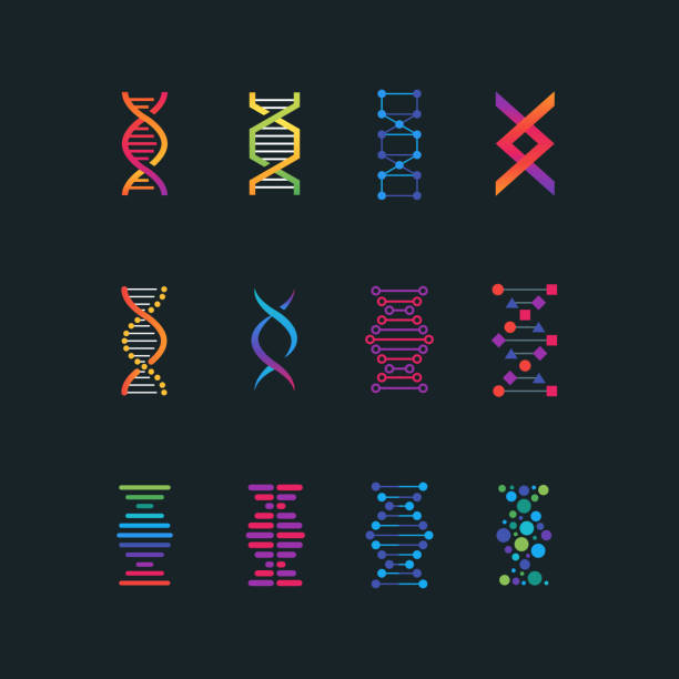 Human dna research technology symbols. Spiral molecule medical bio tech vector icons vector art illustration