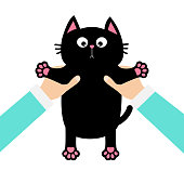 Human doctor vet hands holding black cat Funny face, paw print, mustaches. Veterinarian uniform. Cute cartoon character. Kawaii animal. concept. Love card. Flat design. White background. Vector