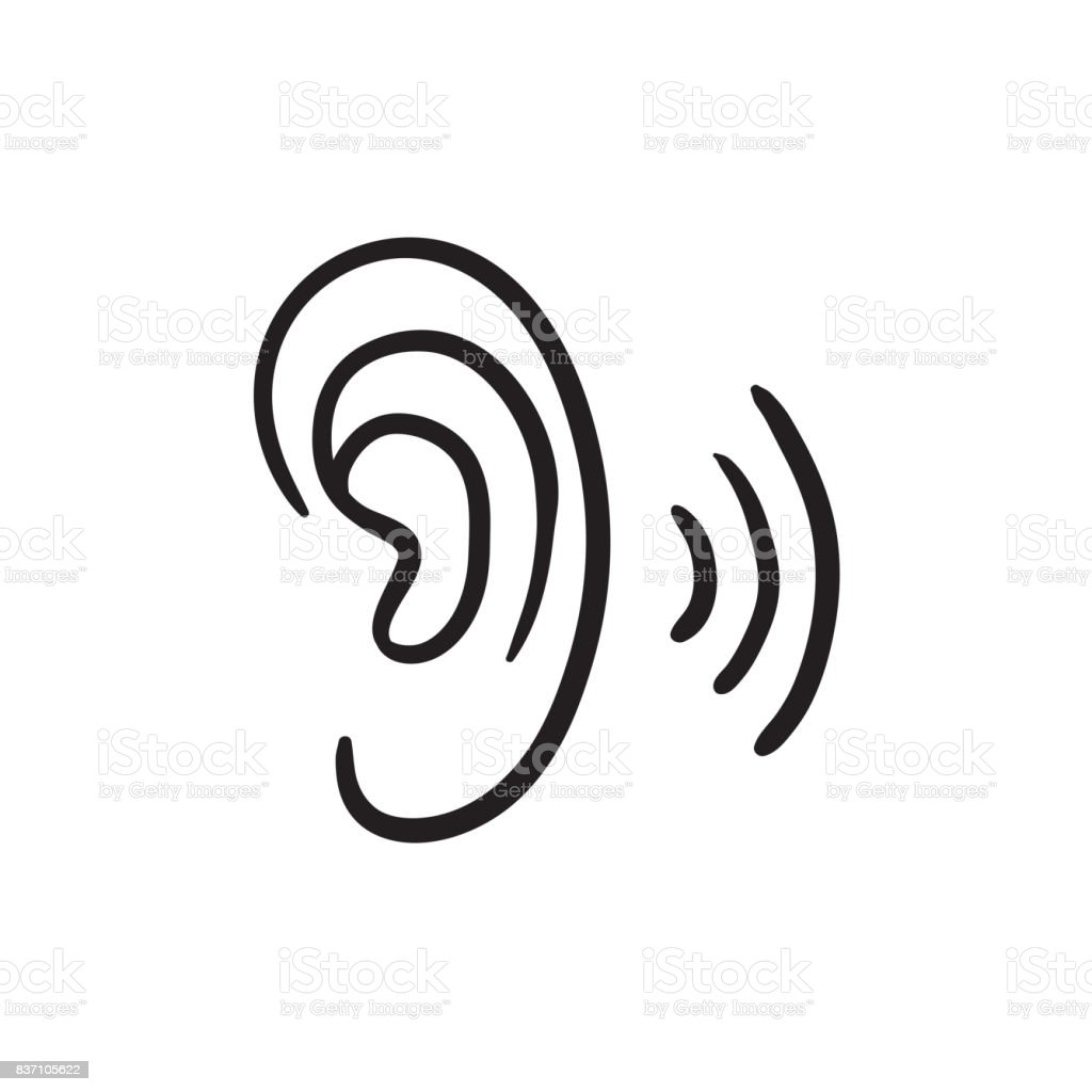 Menschliches Ohr Skizzesymbol Stock Vektor Art und mehr Bilder von ...