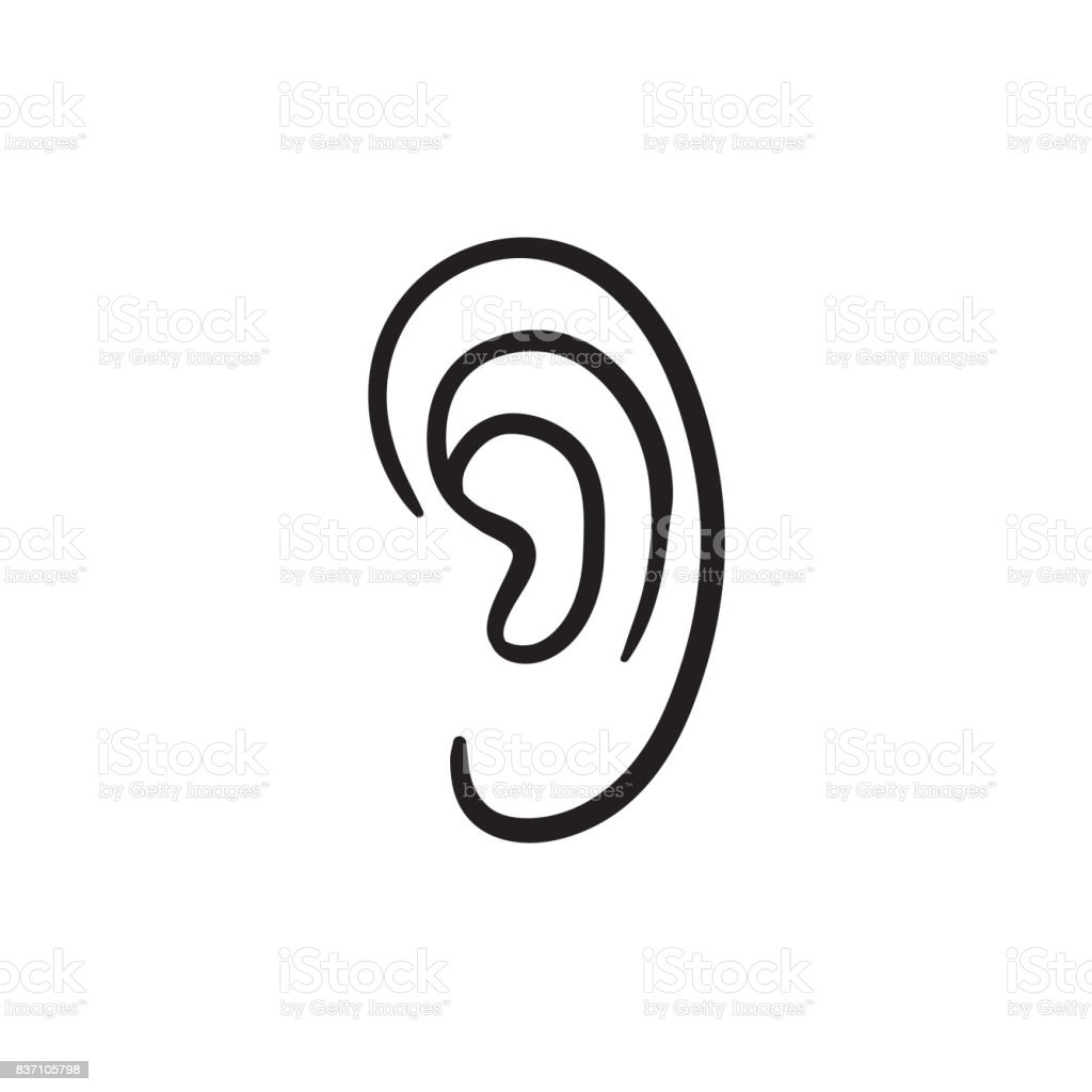 Human ear sketch icon vector art illustration