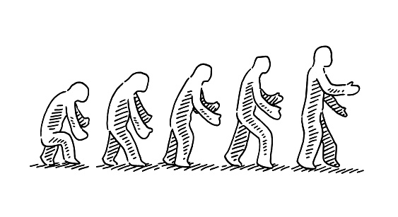 Human Evolution Concept Drawing