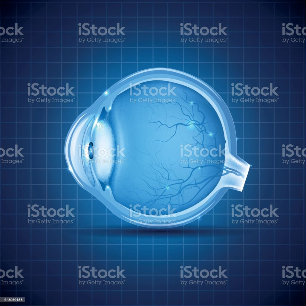 Human eye abstract blue design vector art illustration