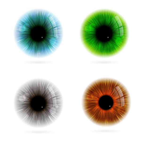 цвет глаз человека - предельно крупный план stock illustrations