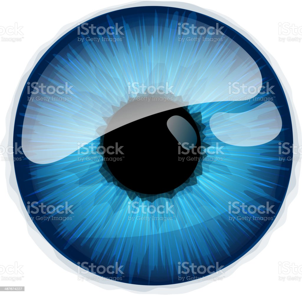 Human eye iris isolated on white background. vector art illustration