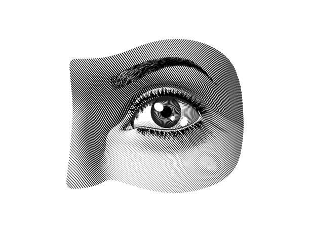 Human eye part black and white illustration vintage style Human eye part monochrome engraving drawing vintage illustration isolated on white background modern art stock illustrations
