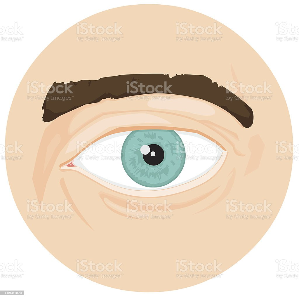Human Eye vector art illustration
