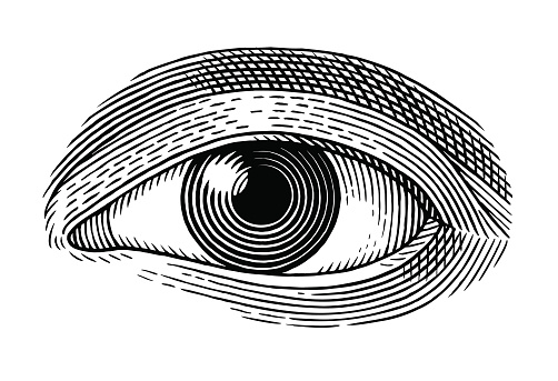 Глаз Человека — стоковая векторная графика и другие изображения на тему 2015
