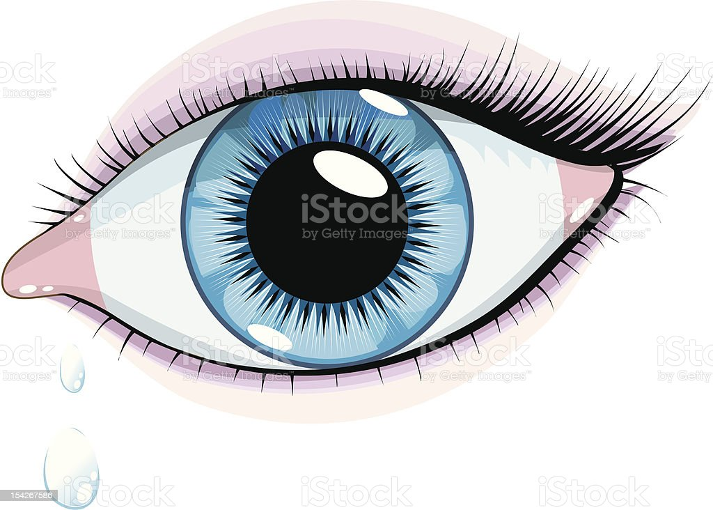 Human female eye vector art illustration