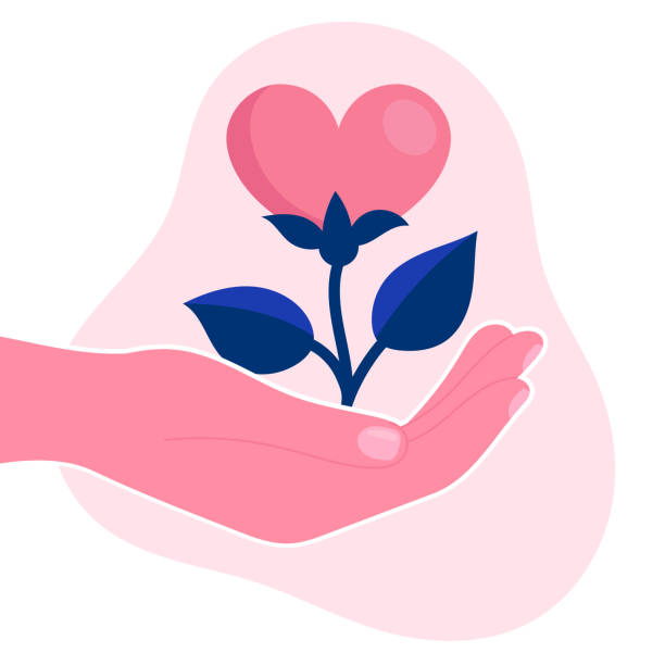 Human hand hold a flower in the form of a heart.Psychological support, help, psychotherapy.Emotional problem.Concept.Flat vector illustration Human hand hold a flower in the form of a heart.Psychological support, help, psychotherapy.Emotional problem.Concept.Flat vector illustration comfort stock illustrations