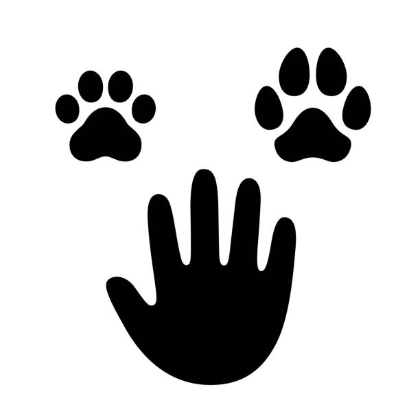 Human hand with dog and cat paw vector art illustration