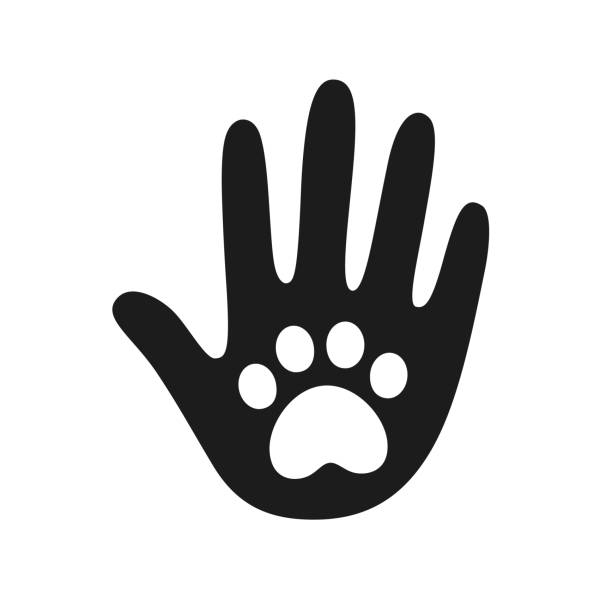 Human hand with pet paw print Human hand palm with dog or cat paw print symbol. Veterinary pet care, shelter adoption or animal charity design element. Helping hand vector illustration. animal shelter stock illustrations