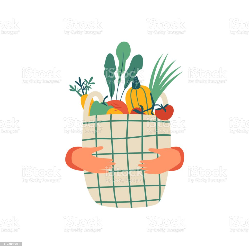 Human hands hold Eco basket full of vegetables isolated on white background - Royalty-free Acessório arte vetorial