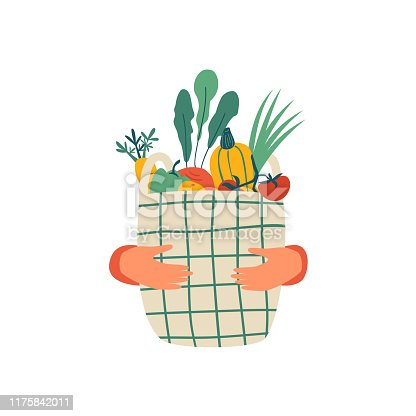 istock Human hands hold Eco basket full of vegetables isolated on white background 1175842011