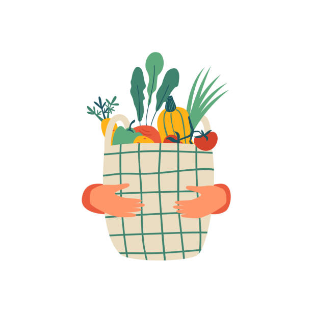 인간의 손은 흰색 배경에 고립 된 야채의 전체 에코 바구니를 개최 - 바구니 stock illustrations