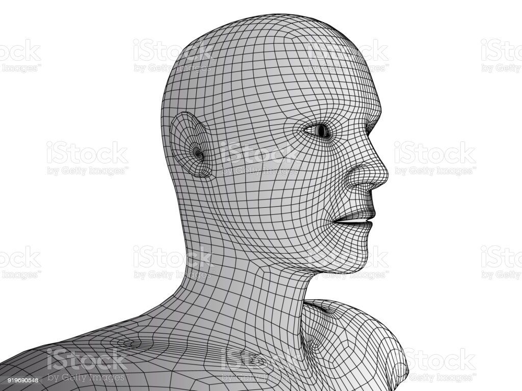 Human Head 3d Wireframe Vector Stock Vector Art & More Images of ...
