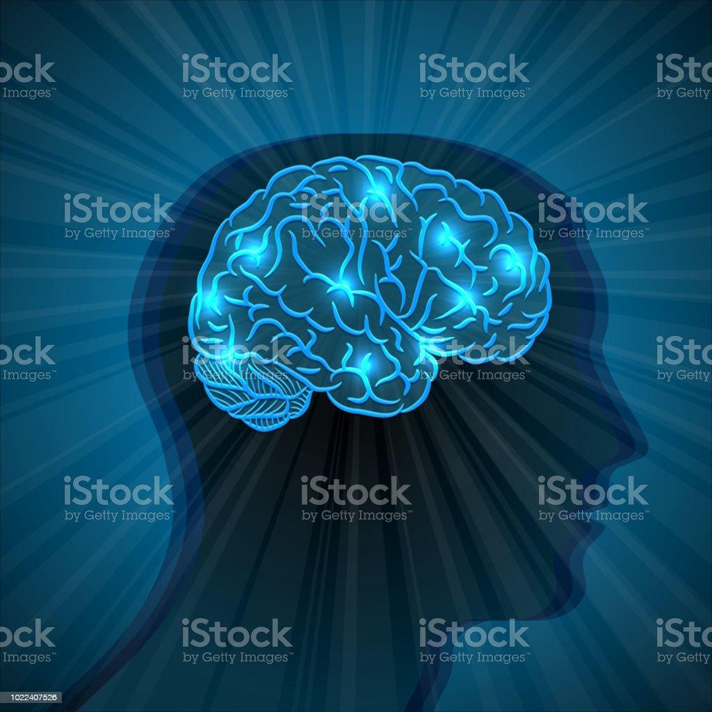 Human head and brain - illustrazione arte vettoriale