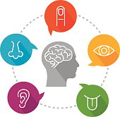 """An illustration depicting sensory receptors. Icon set includes icon for vision (eye); icon for hearing (ear); icon for smell (nose); icon for taste (tongue) and icon for touch (finger). Icons are put inside speech bubbles which are placed on a circular line. In the middle there is a head with a brain icon inside it. Icons are white, very simple and created in a """"line"""" style. Speech bubbles are vibrant and bright."""