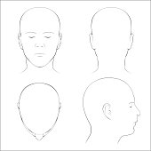 Human Head Surface Anatomy - Outline