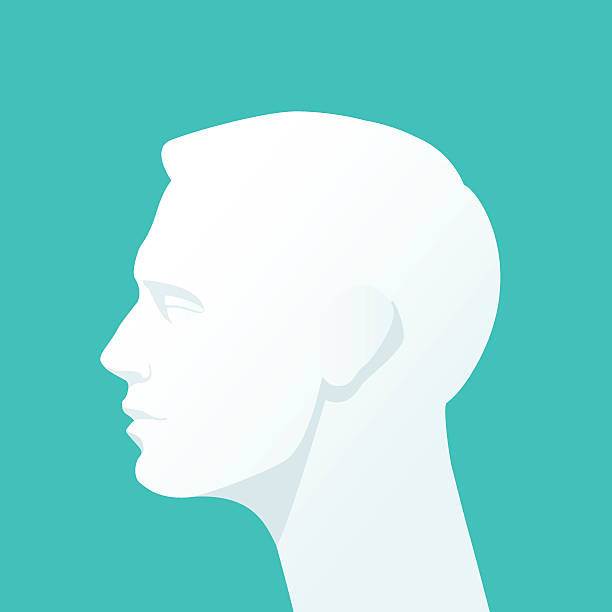 Human head. Silhouette of a man's head on a homogeneous background. Vector Flat illustration. human head stock illustrations