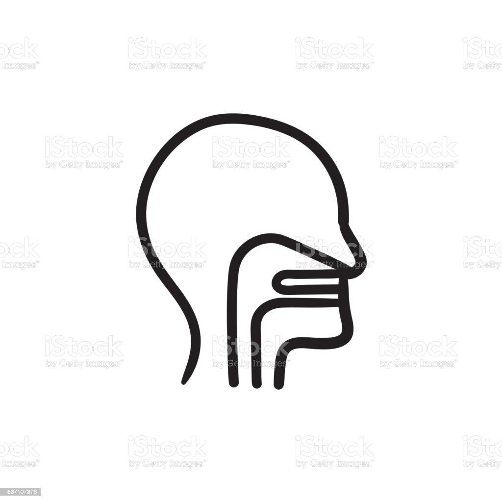 Menschlicher Kopf Mit Ohr Nase Kehle Skizzieren Symbol Stock Vektor ...