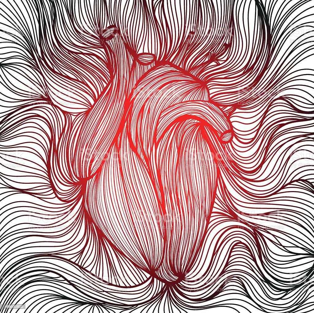 Human heart 2 vector art illustration