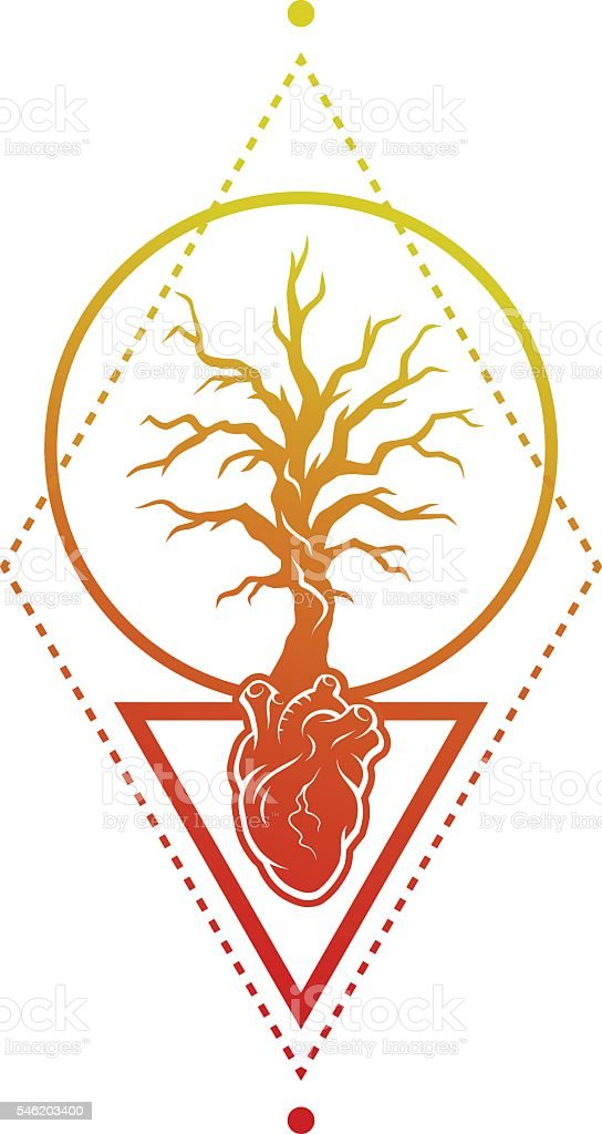 Human Heart Anatomy And The Tree Stock Vector Art More Images Of