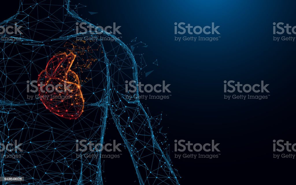 Human heart anatomy form lines and triangles, point connecting network on blue background. Illustration vector - illustrazione arte vettoriale