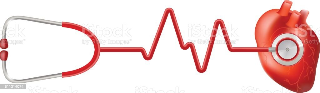 Human Heart And Heart Beat On Ekg With Stethoscope Isolated On A White Background. Realistic Vector Illustration vector art illustration
