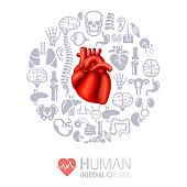 Human internal organs collage