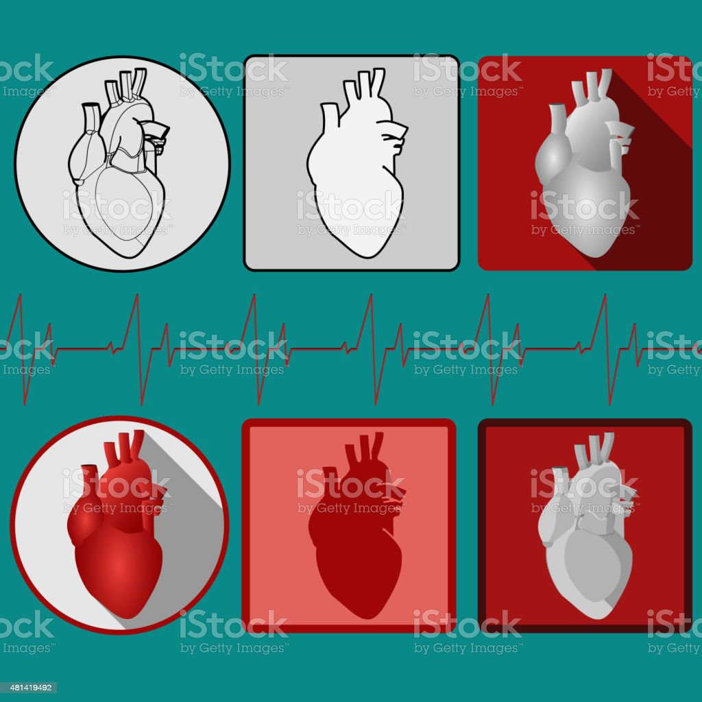 Human Heart Icon With Cardiogram Vector Stock Illustration