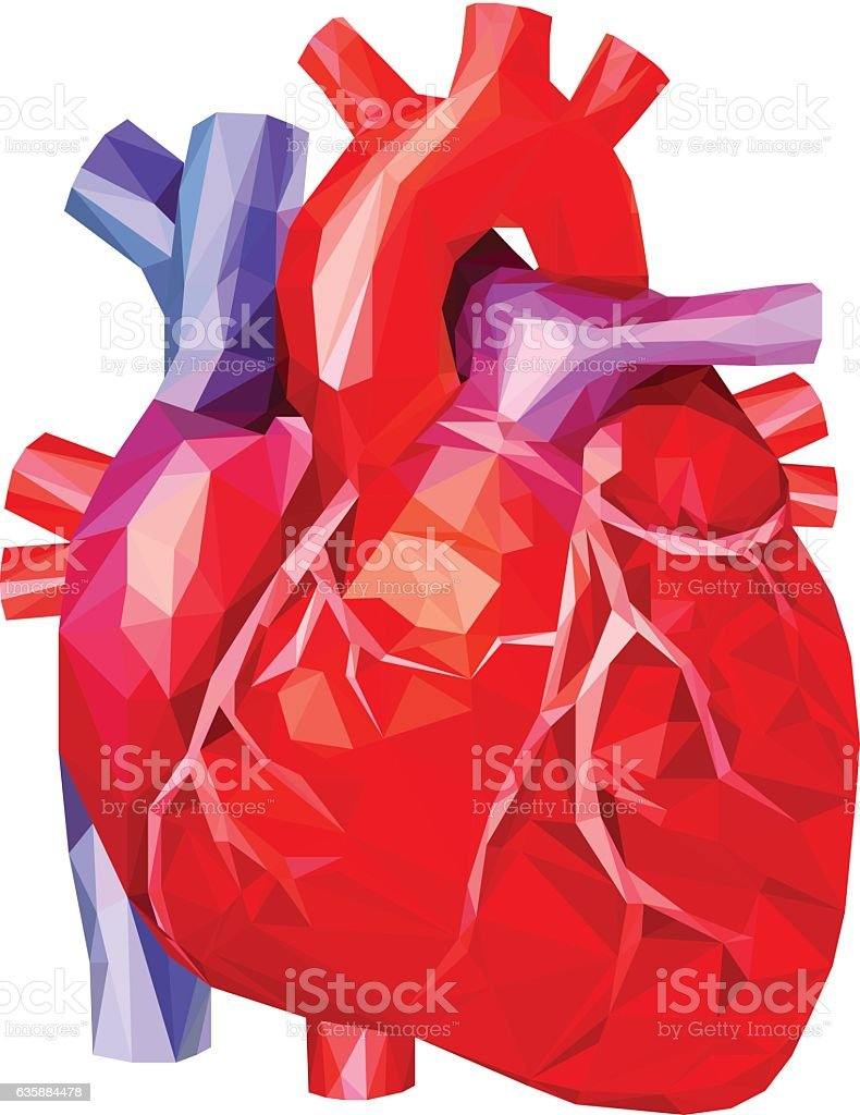 Human heart in low poly. Vector. vector art illustration