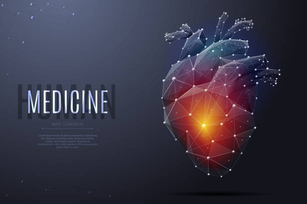 human heart low poly color Vector isolated heart with pain center. Low poly wireframe and points. Polygonal 3D white human organ on dark background. Medicine concept with geometry triangle. Abstract heart pain mash line origami biomedical illustration stock illustrations