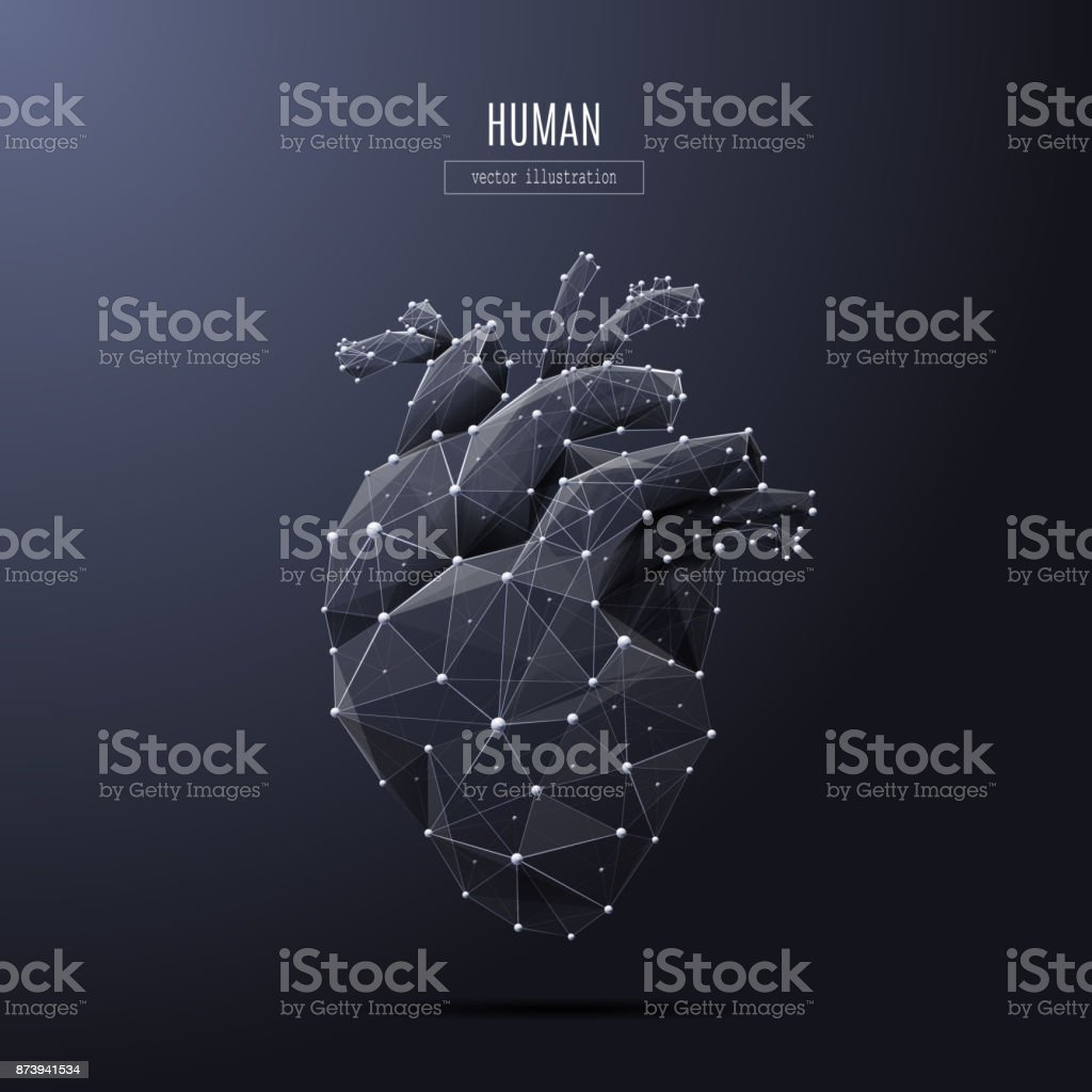 human heart low poly white vector art illustration