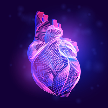 Human heart medical structure. Outline vector illustration of body part organ anatomy in 3d line art style on neon abstract background