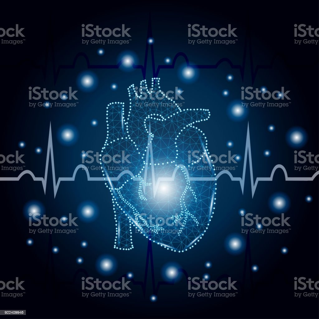 human heart polygon on ECG blue 3 vector art illustration