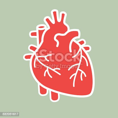 Human heart vector file. Download files include: Illustrator CS3 • Illustrator 10eps • Large jpeg