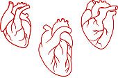 Human hearts icons in outline style