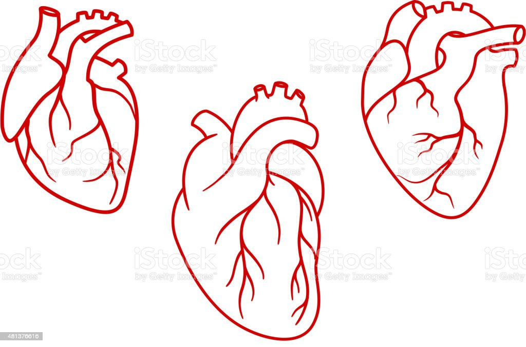 Human hearts icons in outline style vector art illustration