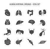 Human Internal Organs Icon Set