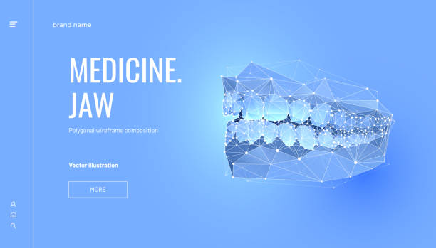 Human jaw low poly wireframe landing page template Human jaw low poly wireframe landing page template. 3d teeth mesh art illustration. Dentist, orthodontic services polygonal banner. Mouth cavity hygiene promotional website page design layout human jaw bone stock illustrations