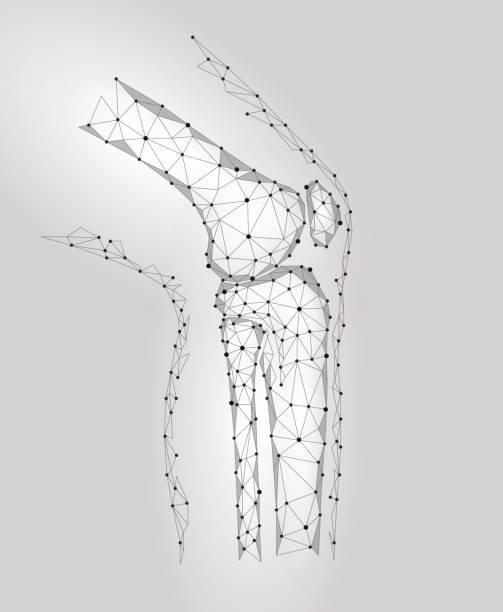 ilustrações, clipart, desenhos animados e ícones de modelo 3d conjunta do joelho humano ilustração do vetor. baixa poli projeto futura tecnologia cura tratamento da dor. fundo cinza neutro homem corpo perna medicina drogas cápsula marketing banner modelo - ortopedia