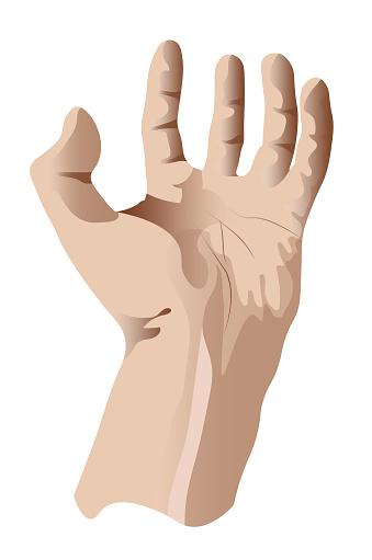 human left hand, gesture of bestowal or retention