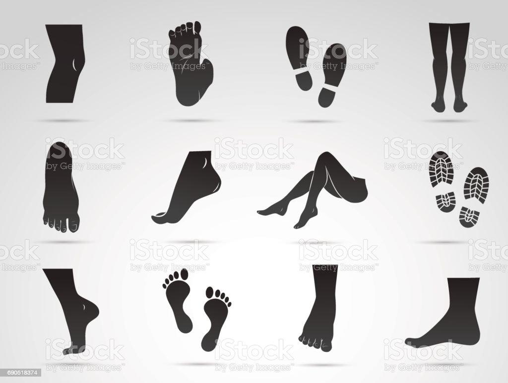 Human leg, foot, knee vector icon set. vector art illustration