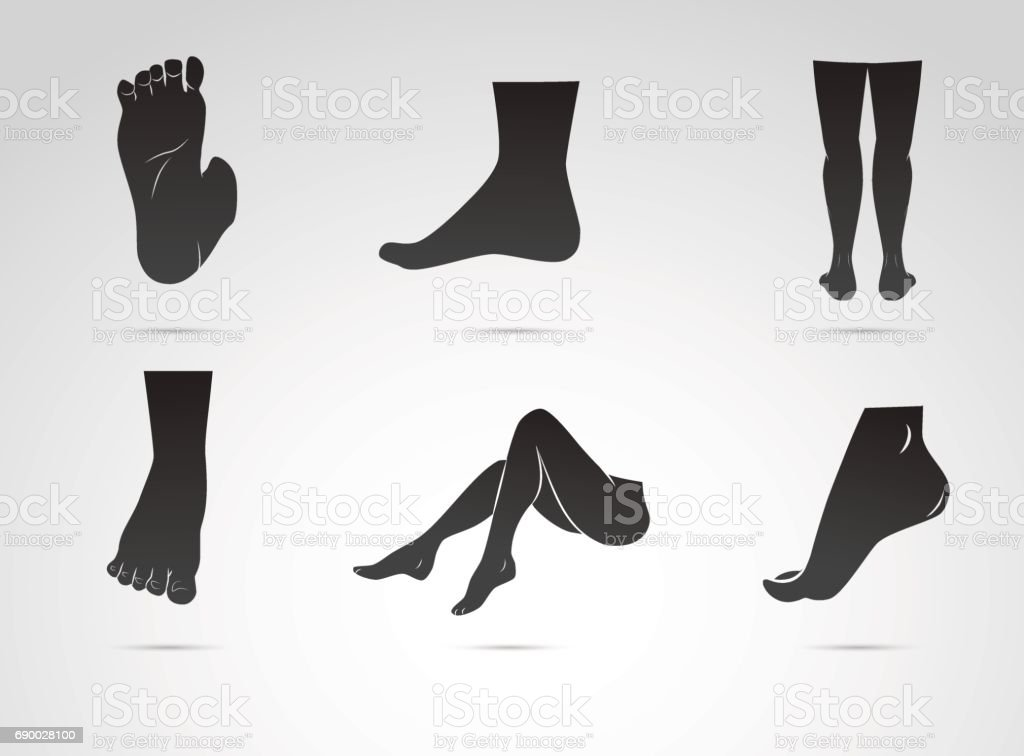 Human leg, foot vector icon isolated on white background. векторная иллюстрация